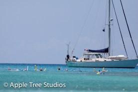 Apple Tree Studios Sail Mag44
