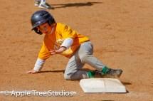 Apple Tree Studios Sport28