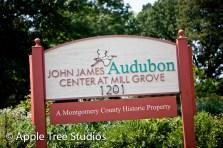 John James Audubon Wedding01