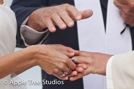 Salero Rehoboth Wedding-36