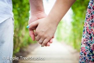 Apple Tree Studios-9
