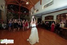 Onion Pub Brewery Lake barrington IL Wedding 043