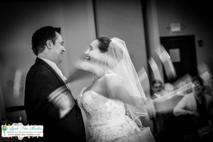 Apple Tree Studios Chicago Wedding Photographer-21