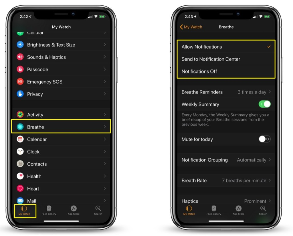 How To Turn Off or Adjust 'Breathe' Reminders on Your Apple Watch