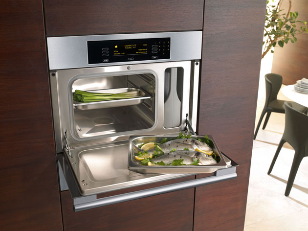 miele steam oven review dg4082