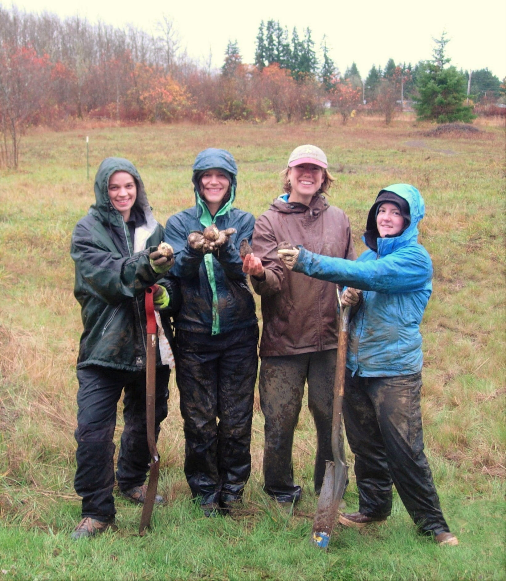 Volunteer – Institute for Applied Ecology