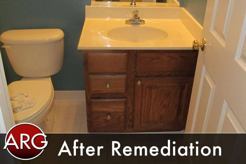after mold remediation bathroom