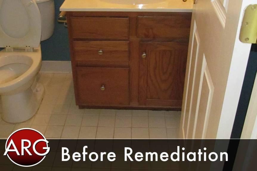before mold remediation bathroom
