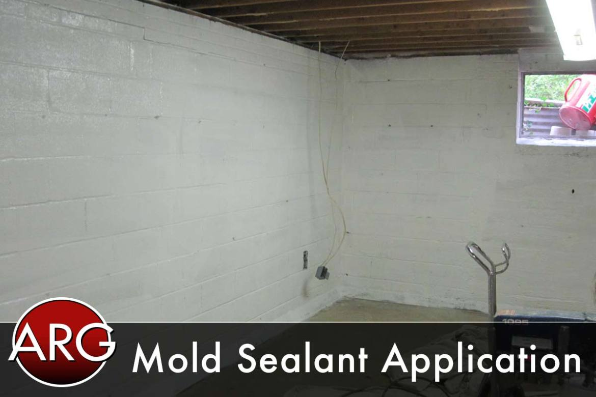 Mold Application