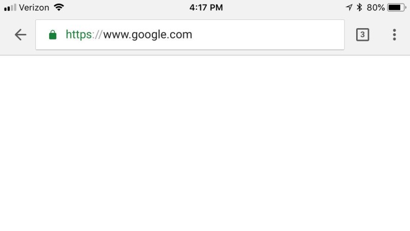No search on the Google website