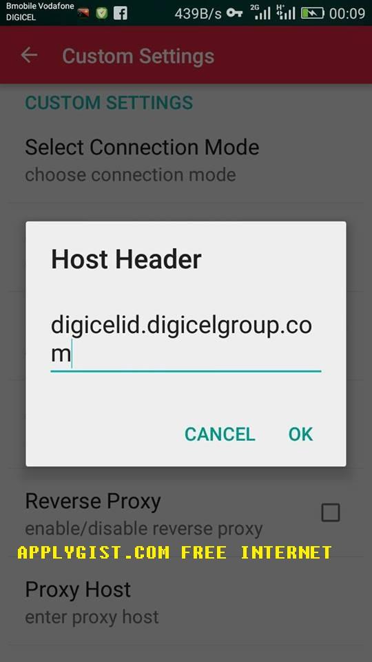 Digicel Internet Tweakware Setup PNGITFS