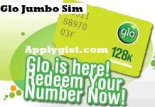 Glo Jumbo Sim