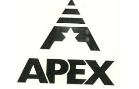 Apex Frozen Foods IPO First Day Subscription Figures - Apply IPO