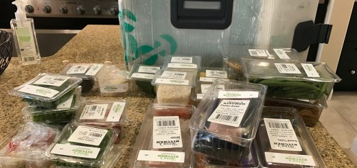Smart Home Cooking with Terra's Kitchen