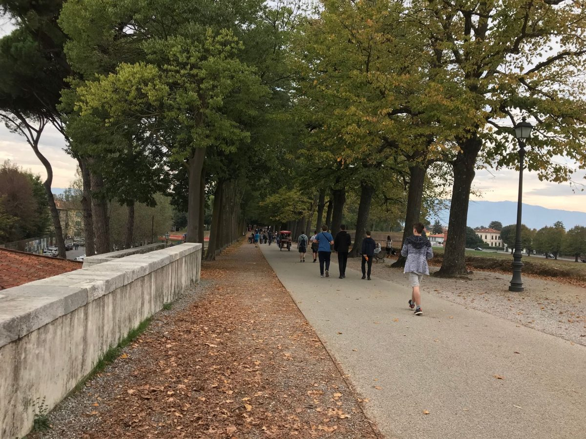 people strolling on Lucca wall