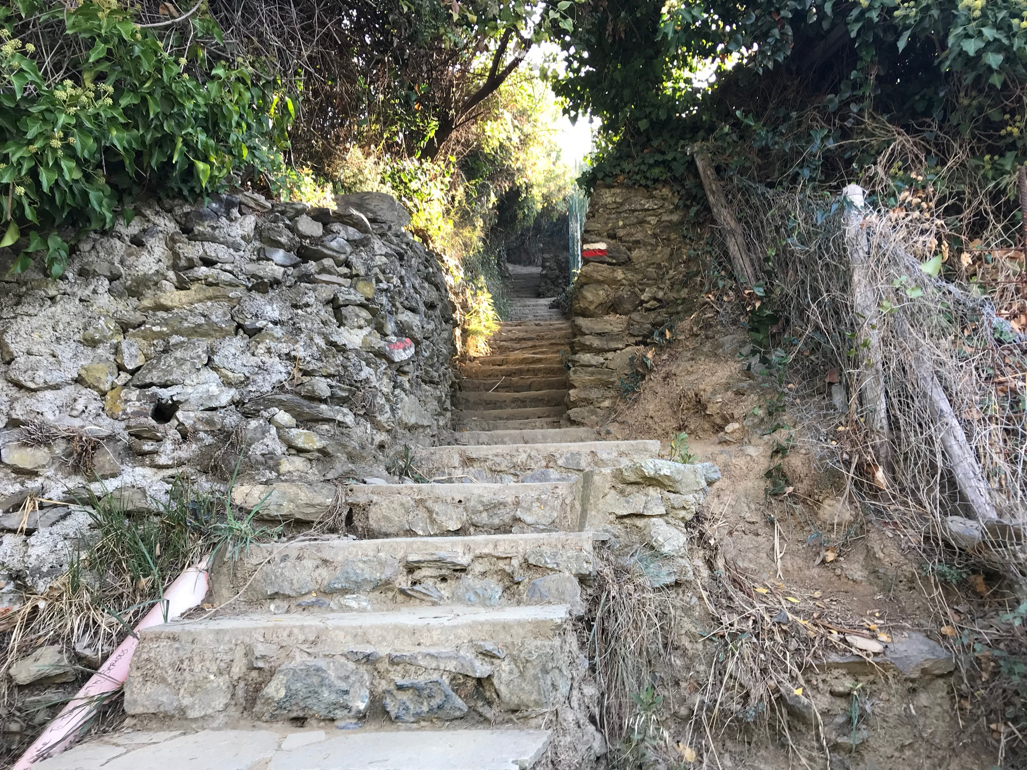 monterosso to vernazza stairs