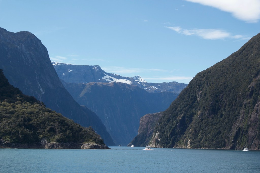 New Zealand Milford Sound Cruise