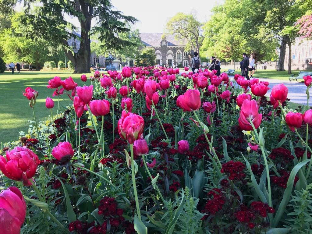 Christchurch New Zealand Gardens