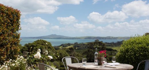 Three Days in Auckland Waiheke Island Vineyard View