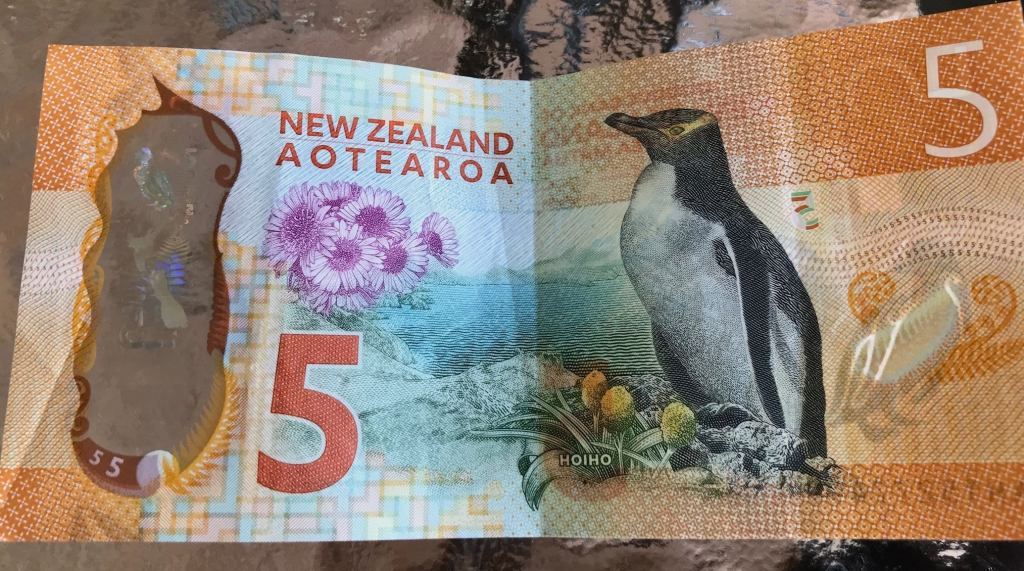 Penguins in New Zealand Five Dollar Note