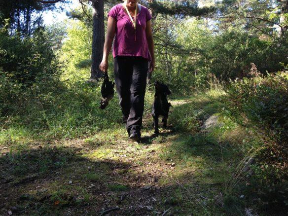 The crow, Tassla, and me on a walk
