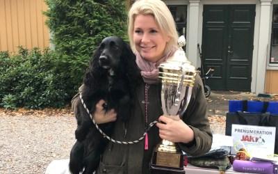 Intervju med vinnaren av Spanielmästerskapen 2017: Anna Lindholm