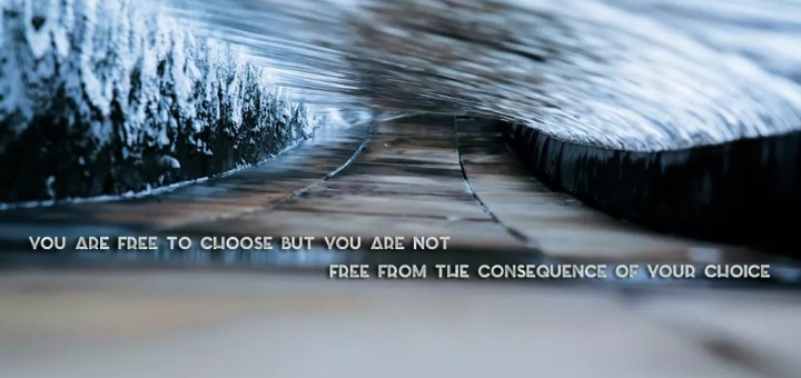 Free To Choose... The Choices We Make As Appraisers