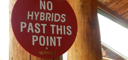 Proposed Hybrid Meeeting - Overwhelming Majority Were Against Hybrids