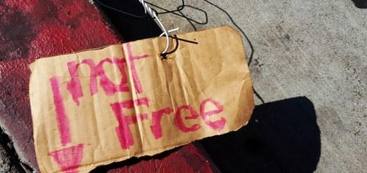 You Are a FEE Appraiser Not a FREE Appraiser - Ponzi Scheme AMCs
