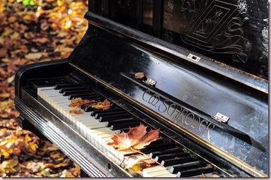 Piano d'occasion