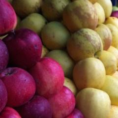 Les cycles de la nature et votre alimentation