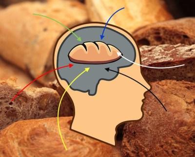 programmation-habitudes-alimentaires