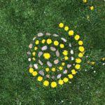 land-art fleurs et cailloux