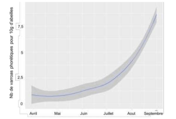dynamique exponentielle du varroa
