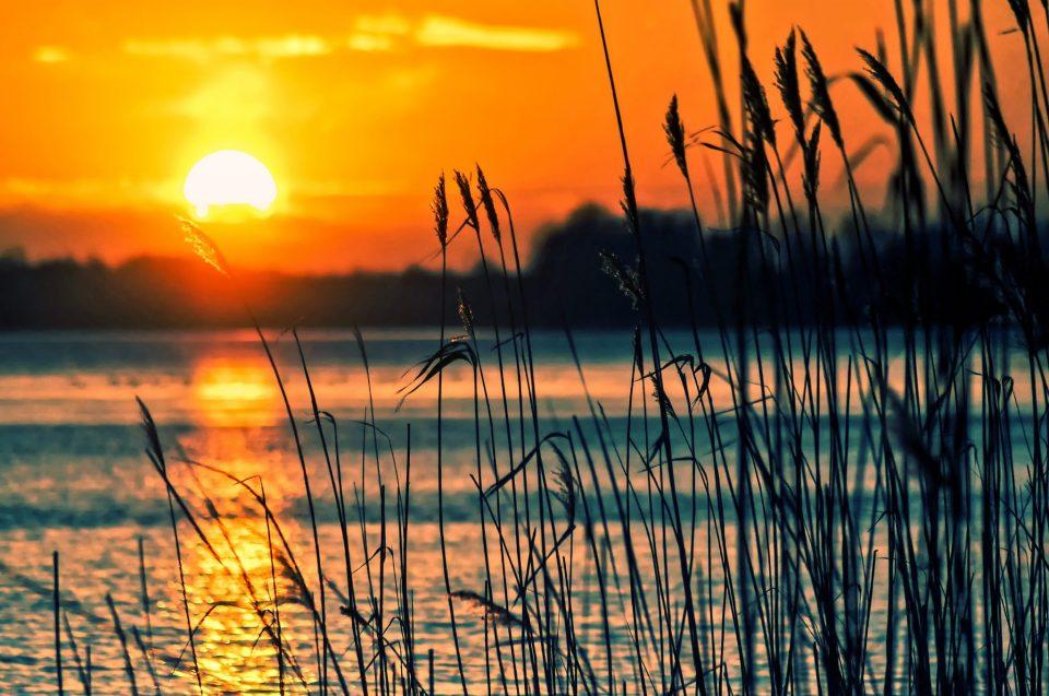 Coucher de soleil sur un lac et herbes hautes