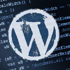 10 points à appliquer pour sécuriser correctement son WordPress 2