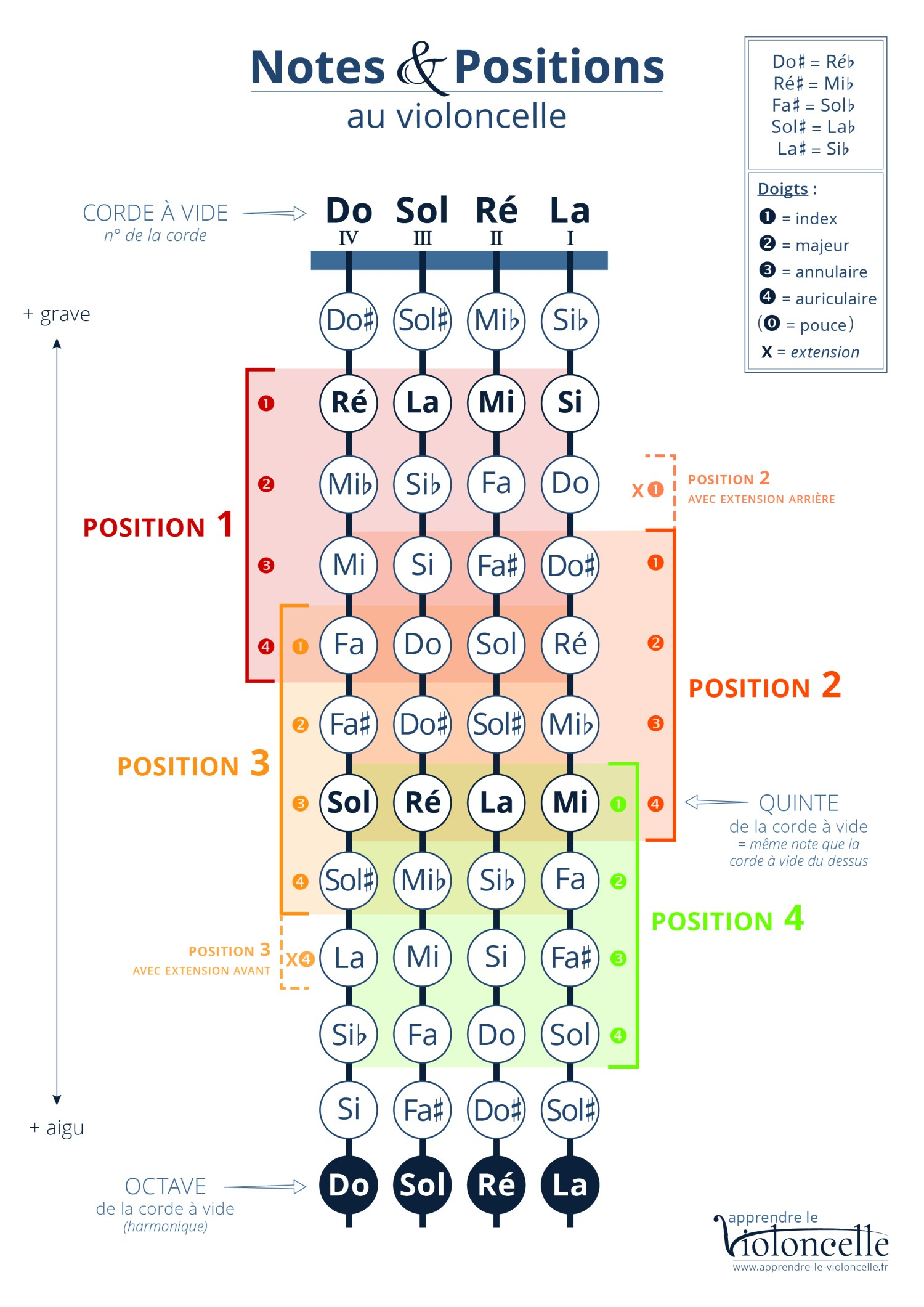 Apprendre-le-violoncelle - Notes & Positions