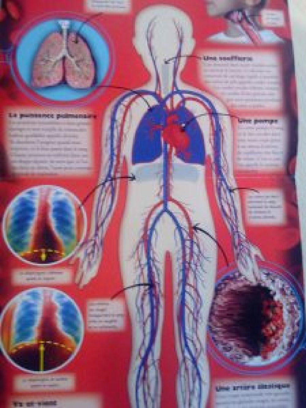 livre scientifique pour enfant