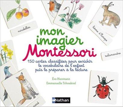 cartes-nomenclature-montessori-lecture