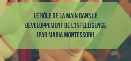 role-main-intelligence-montessori