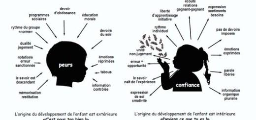 transition pédagogique ferme des enfants