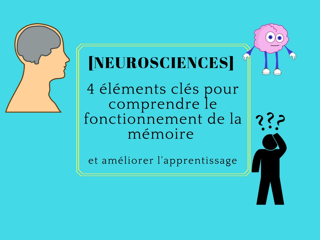 neurosciences apprentissage mémoire