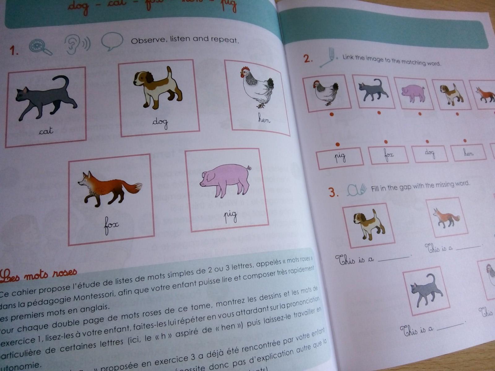 petits montessori anglais enfants 6 ans