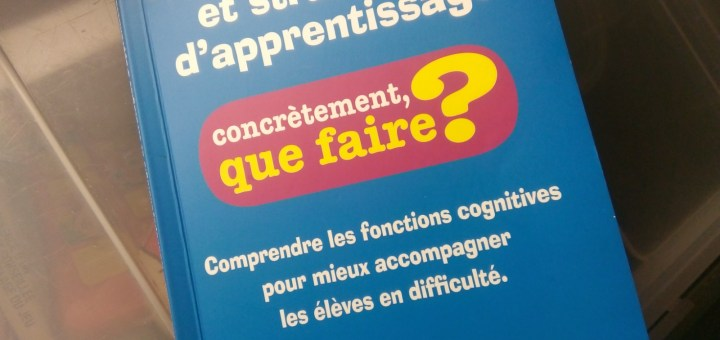 Neuropsychologie et stratégies d'apprentissage troubles dys