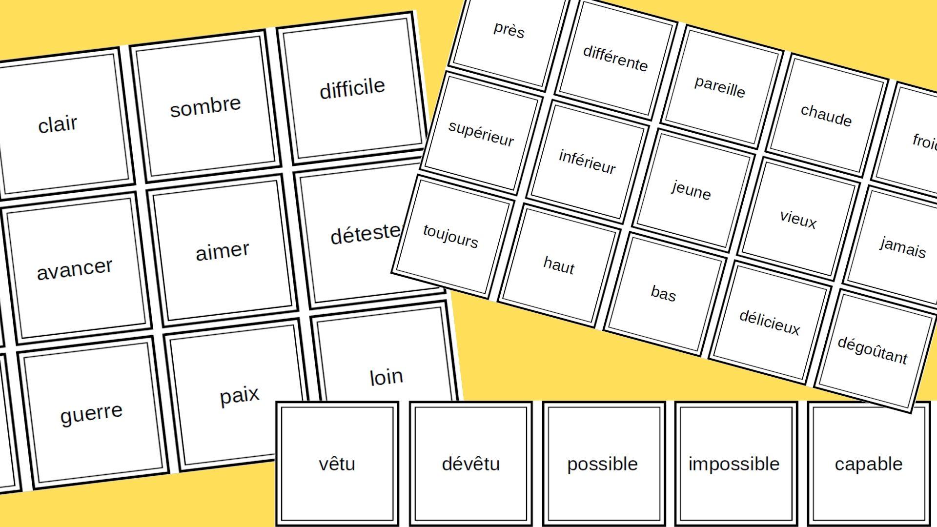 Memory Des Antonymes Un Jeu De Vocabulaire Pour Travailler La Notion De Contraire En Francais Apprendre Reviser Memoriser