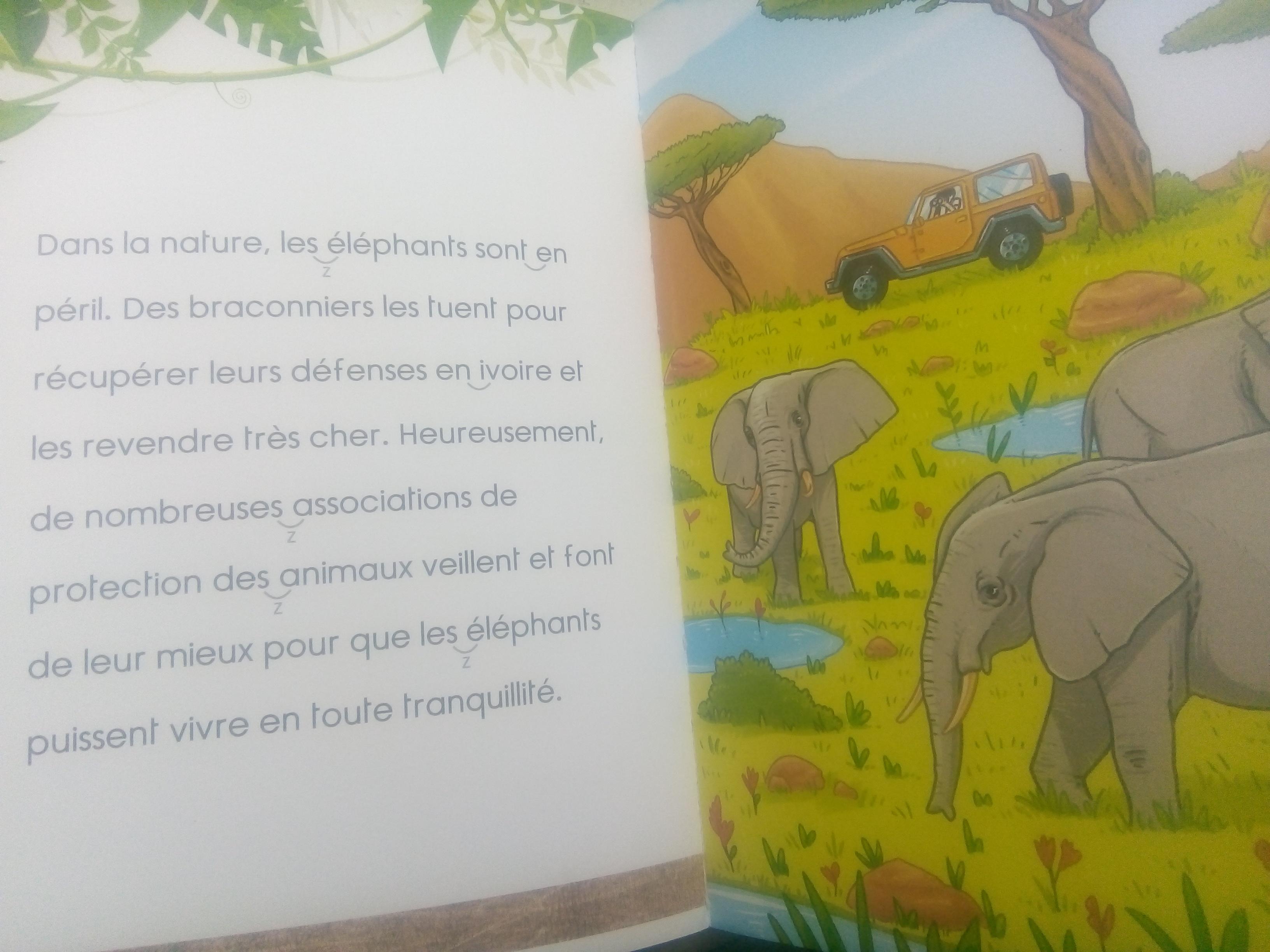 Mes Premieres Lectures Avec Une Saison Au Zoo Des Livres