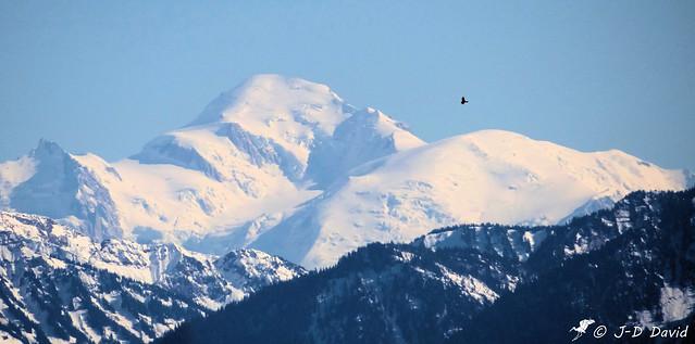 Défi du mont Blanc