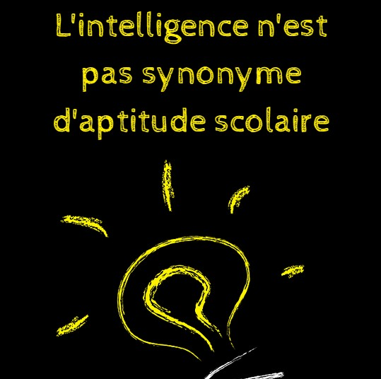 l'intelligence n'est pas synonyme d'aptitude scolaire
