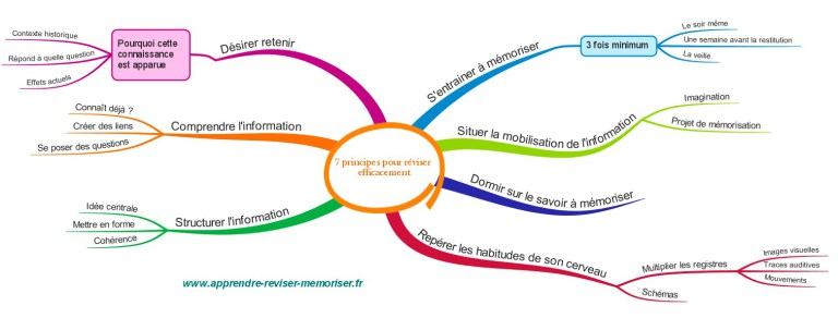 comment-reviser-efficacement