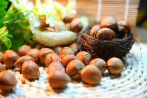 noisettes : fruits secs indispensables pour la santé
